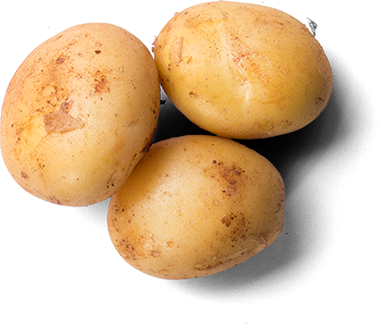 Alberta Potato Growers